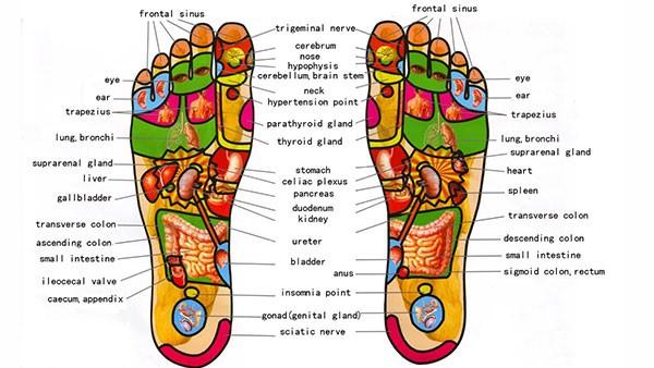 روتای - سلامت پا
