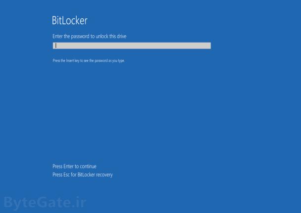 BitLocker Password
