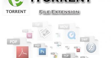 فرمت فایل تورنت Torrent