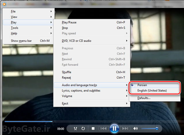 Windows Media Player Audio and Language track
