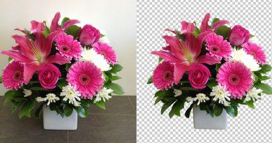 remove bg flower