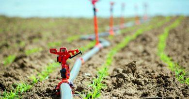راهنمای قطره چکان کشاورزی برای انواع مختلف آبیاری